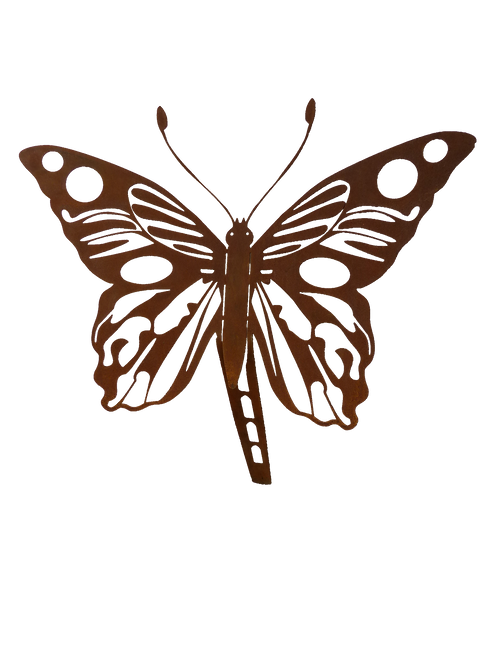 Beetstecker Schmetterling
