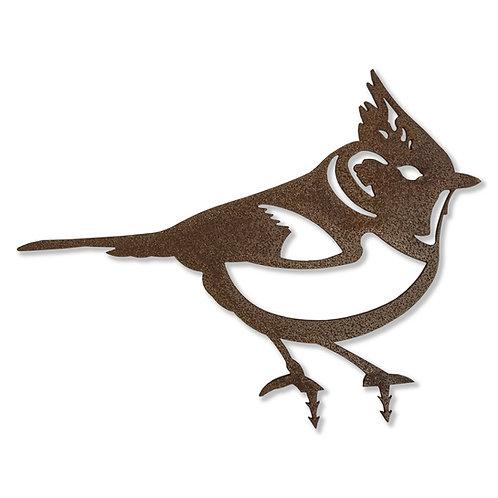 Haubenmeise (Vogel)
