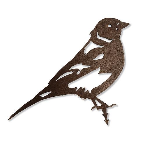 Buchfink (Vogel)
