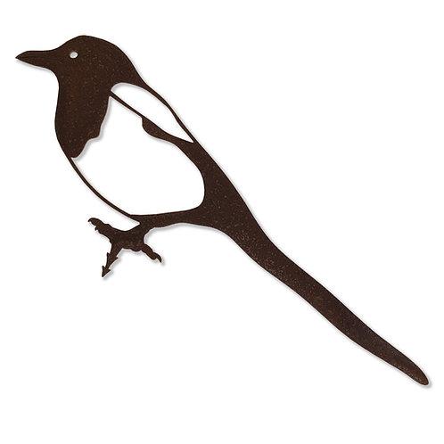 Elster (Vogel)