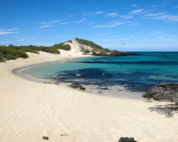 Playa Galapagos
