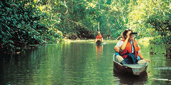 Canoas amazonia