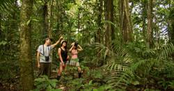 Tour amazonia