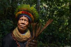 Nativo Amazonia Ecuatoriana