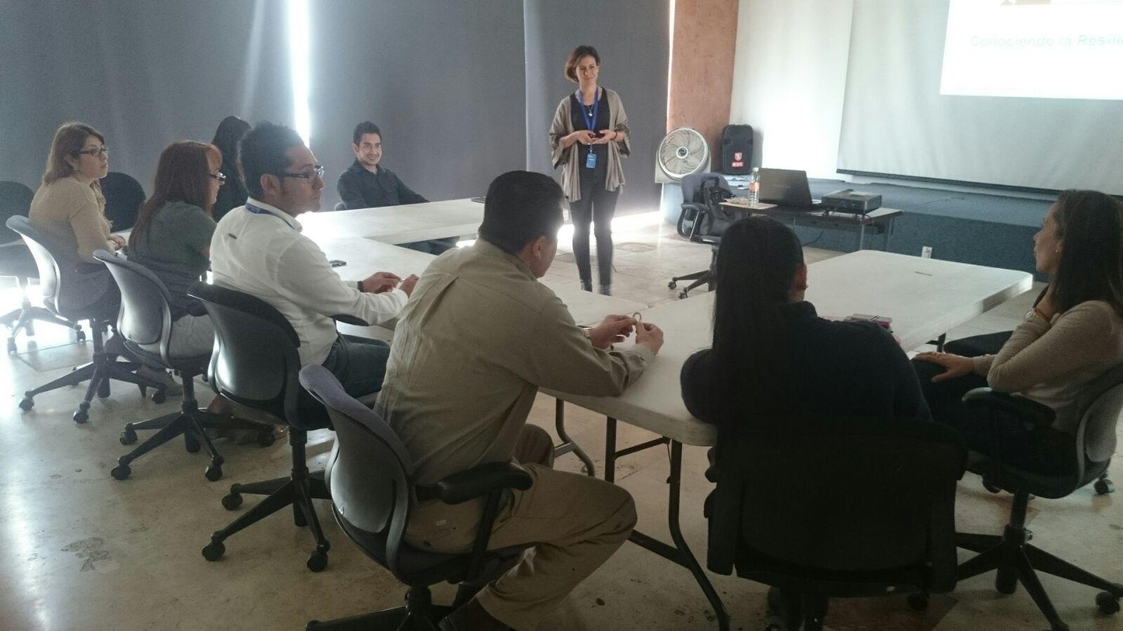 Grupo Altavista