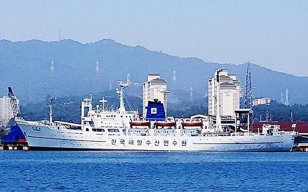 Training Ship at low price in Korea
