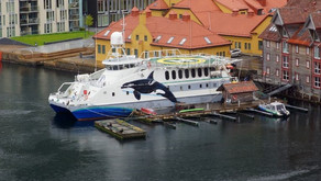 Modern Expedition Cat for sale in Norway