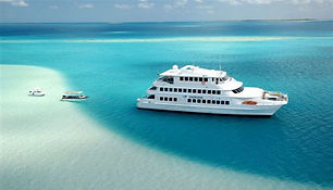 Luxury Cruise Catamaran for sale