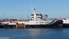 DAMEN 3307 Design Patrol Boat for Sale in Nigeria
