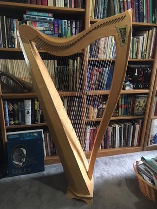Dusty Strings Harp For Sale