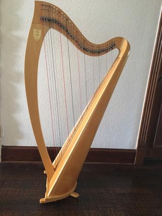 Beautiful Ogden Harp For Sale