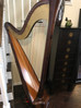 Salvi Daphne 40 Pedal Harp For Rent