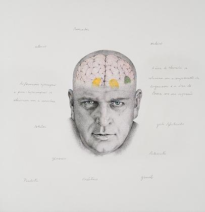 Mapeamento Cognitivo, 2017 - Oswald de Andrade