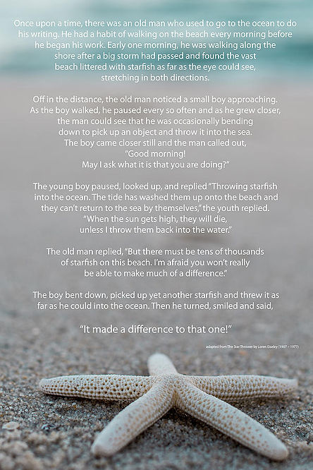 starfish-make-a-difference-terry-deluco.