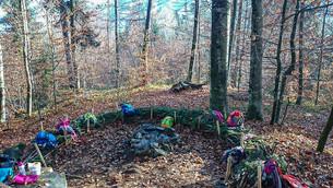 Waldspielgruppe_Waldnest.jpg