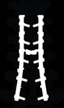 Lumbar Fusion
