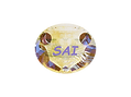 SAI Logo 1 reduced.PNG
