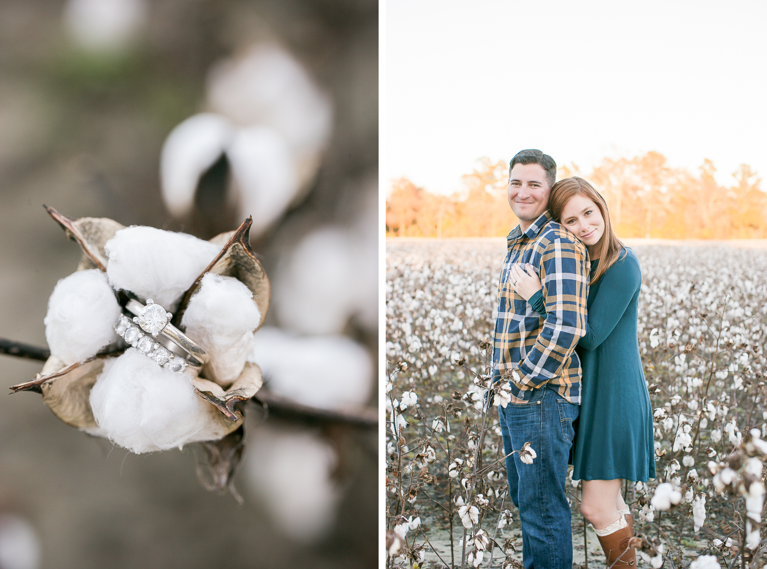 cotton field couples session