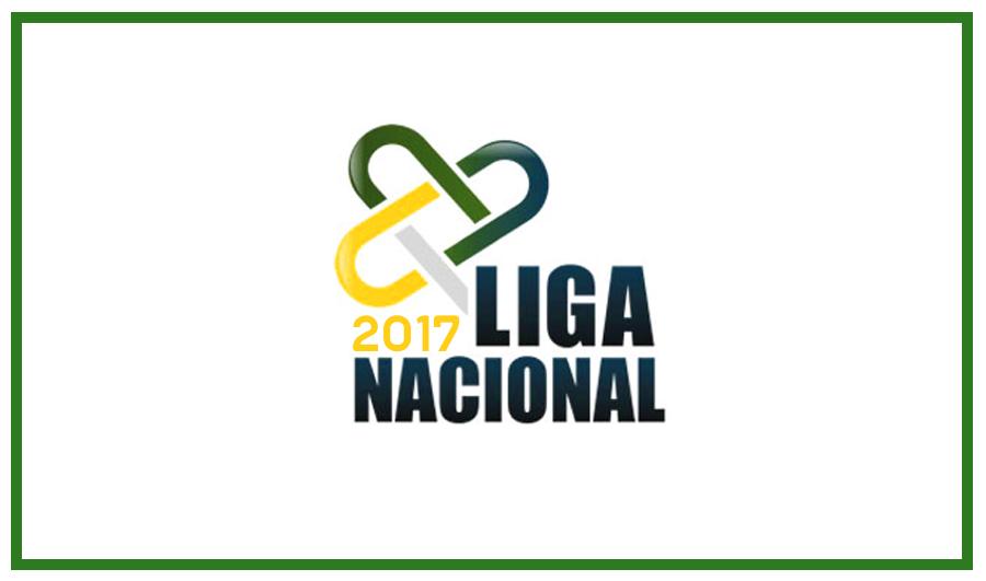 Liga Nacional de Handebol 2017. (arte Tchê Esportes)