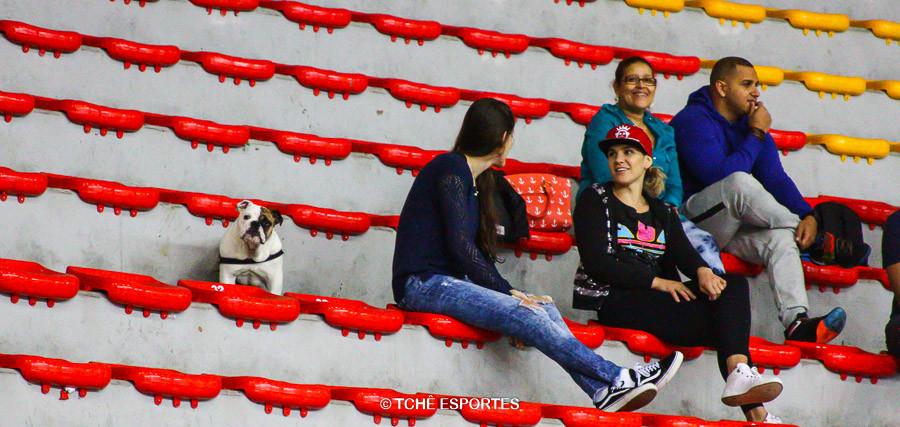 """Torcedo """"bravo"""". (foto André Pereira / Tchê Esportes)"""