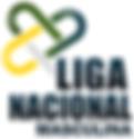 Liga Nacional de Handebol 2016