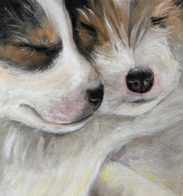 Puppies Snuggles