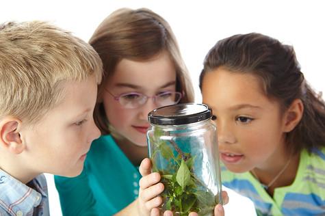 Kids looking at jar_ 10.jpg