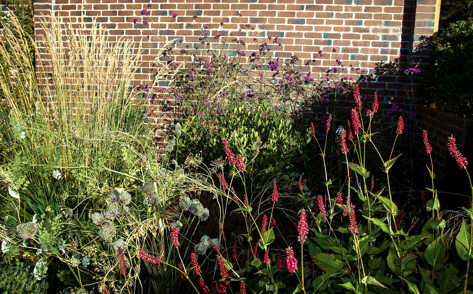 Garden Designer Perth