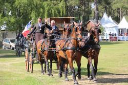 Coupe des Nations Saumur 2014
