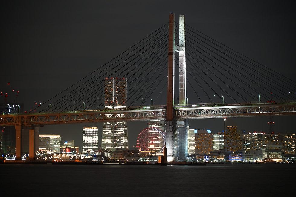 横浜の夜景.jpg