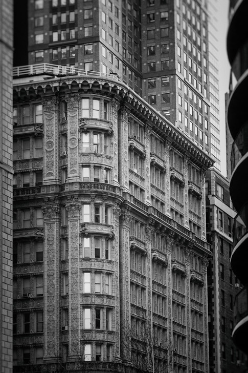 Alexia Cumin USA New York_2079.jpg
