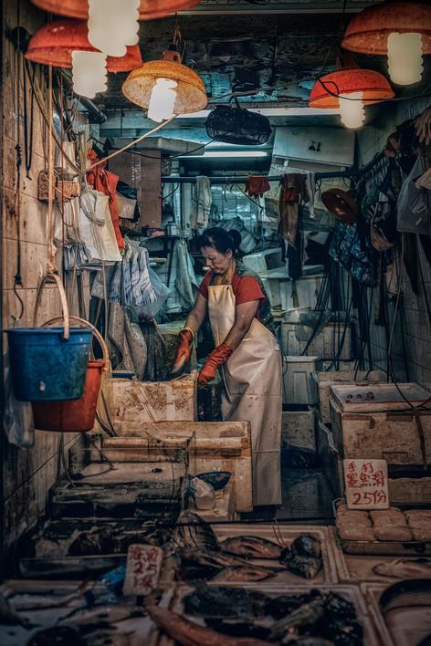 Alexia Cumin Hong Kong Gallery_7699.jpg