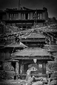 NEPAL_0323.jpg