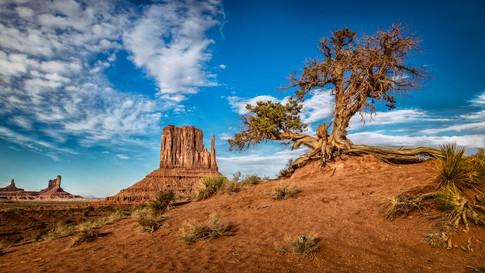 Alexia Cumin USA Monument Valley_4401.jpg