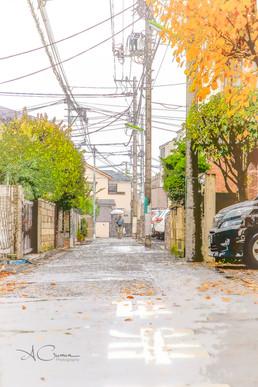Alexia Cumin Photographe Tokyo_8538.jpg