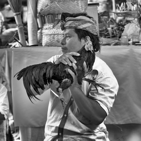 Alexia Cumin Indonésia_0931.jpg