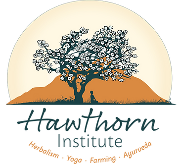 Hawthorn Institute logo