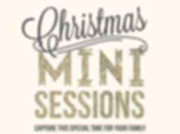 christmas mini session.jpg