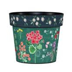 GERANIUM WELCOME ART POT 6 INCH