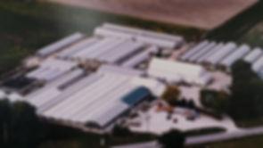 bench farm 1990s 2.jpg