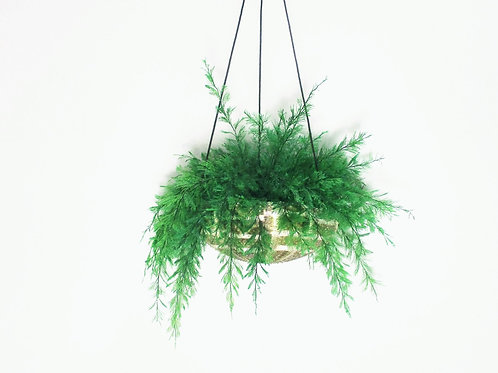 AIR FERN HANGER