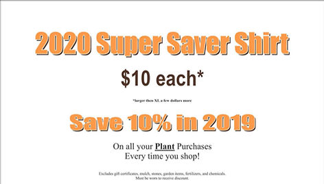 Benchs 2020 Super Saver Banner (2).jpg