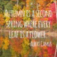 autumn second spring.jpg