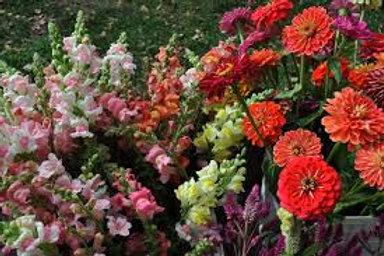 Cut Seasonal Flower Bouquet
