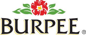 burpee logo.png
