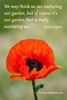 nurture garden quote.jpg
