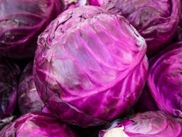 Cabbage Red 2 pack