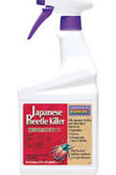 JAPANESE BEETLE SPRAY QT
