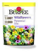 burpee large bag wildflower seed.jpg