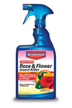 BAYER R & F RTU INSECT 24OZ KILL